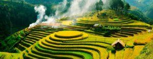Вьетнам – прекрасное место для экзотического отдыха