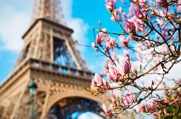 Туры во Францию: весна — лето 2019